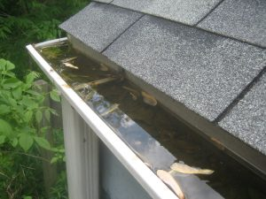 gutter filled with water